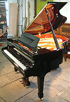 New Wendl & Lung Model 161 Professional grand piano For Sale with a black case and polyester finish
