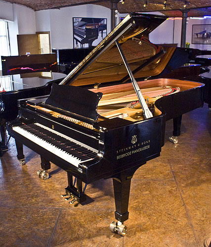 Steinway model d concert grand piano for sale with a black for Big grand piano